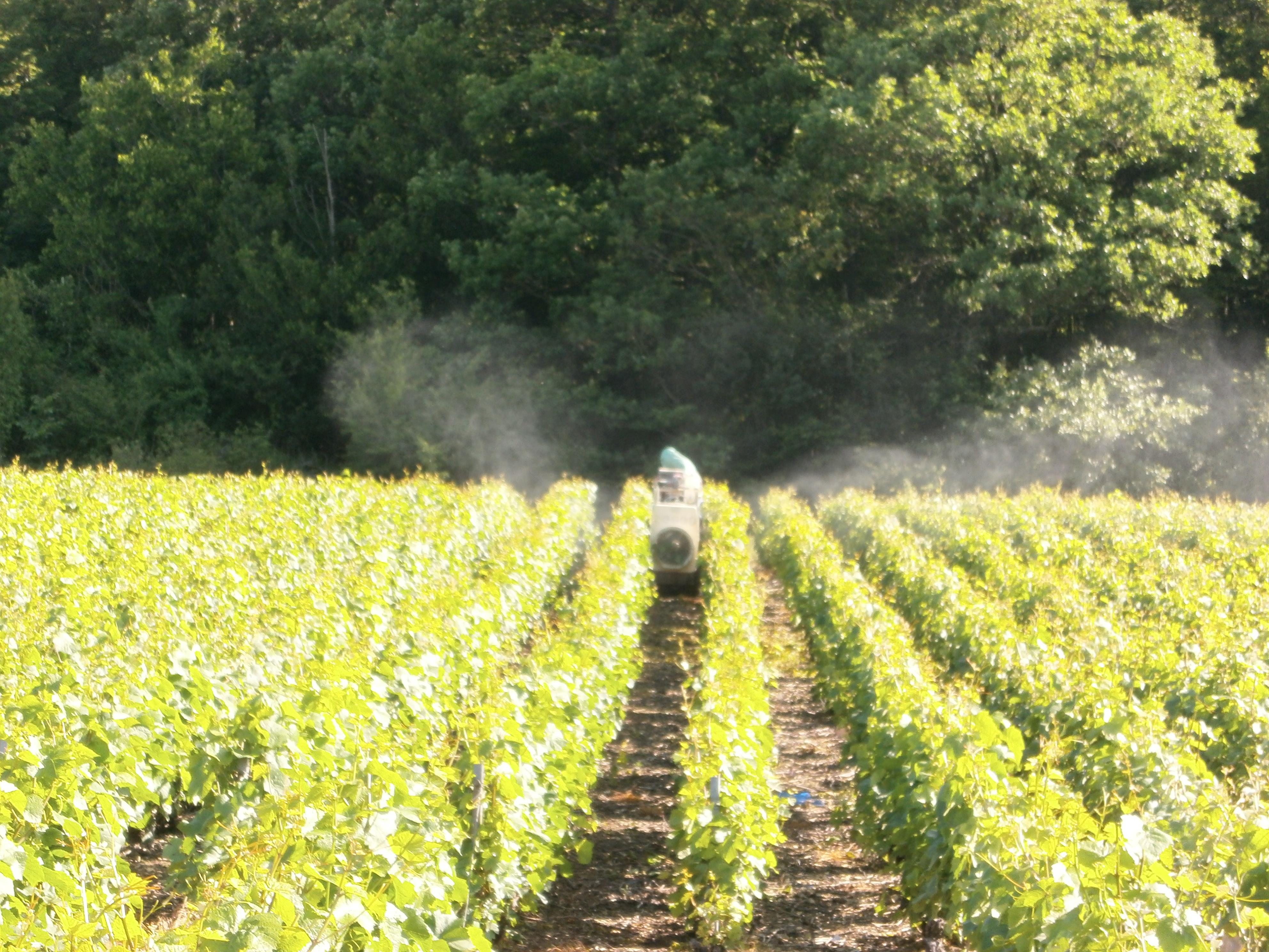 Traitement phytosanitaire avec chenillard
